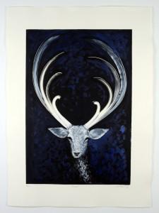 Comet-Monotype-hand-colouring-image size-58x40cms-paper size-76x56cms-black-white-contemporary-animal-Deborah-Treliving-contemporary-British-artist