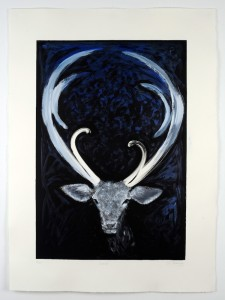 Donner-Monotype-hand-colouring-image size-58x40cms-paper size-76x56cms-black-white-contemporary-animal-Deborah-Treliving-contemporary-British-artist