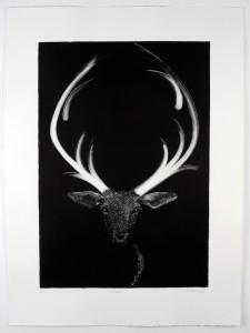 Prancer-Monotype-image size-58x40cms-paper size-76x56cms-black-white-contemporary- animal-Deborah-Treliving-contemporary-British-artist