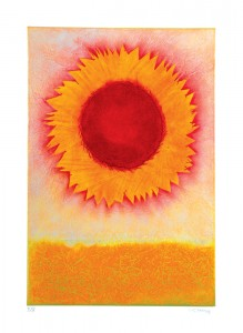 Sun Flower A5 150x210mm Greetings card with white envelope. Image taken from original carborundum print.
