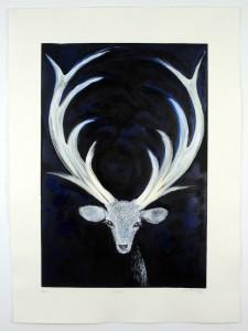 Vixen-Monotype-hand-colouring-image size-58x40cms-paper size-76x56cms-black-white-contemporary-animal-Deborah-Treliving-contemporary-British-artist