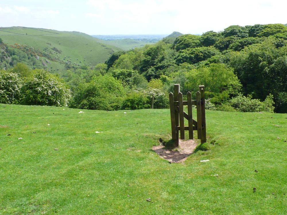 Gate-Peak-District-Deborah-Treliving-contemporary-British-artist