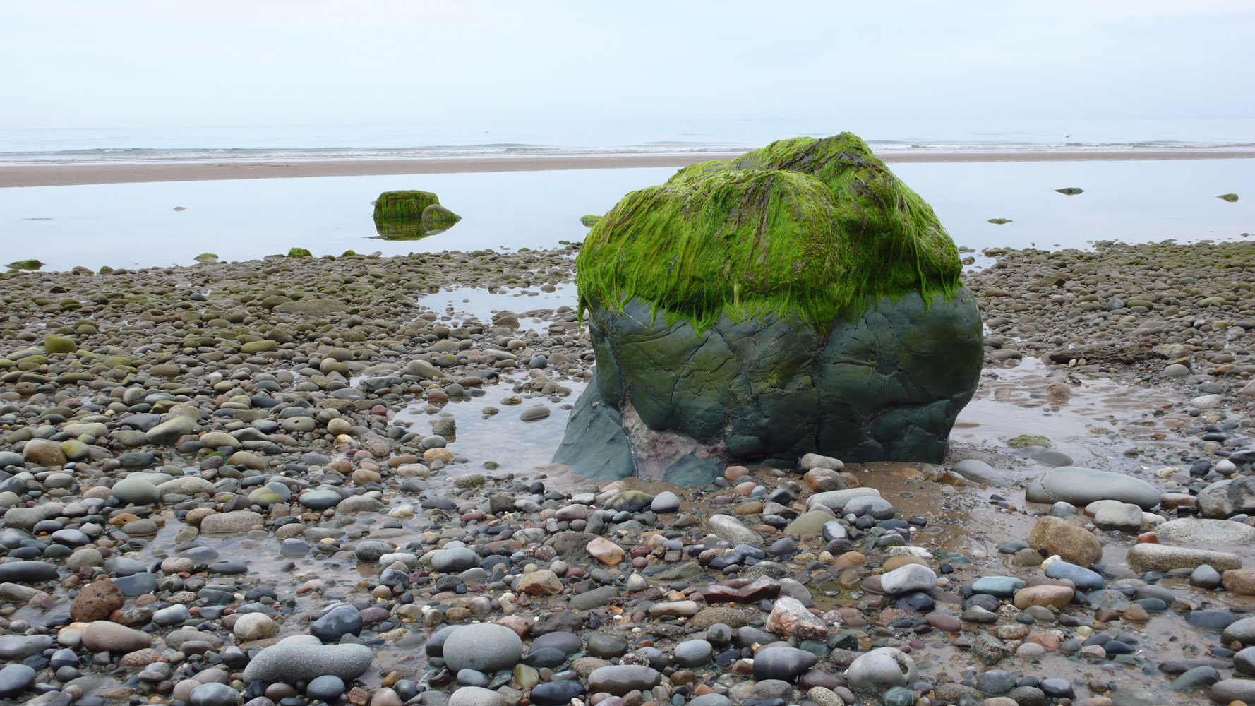Low-tide-Nefyn-Deborah-Treliving-contemporary-British-artist