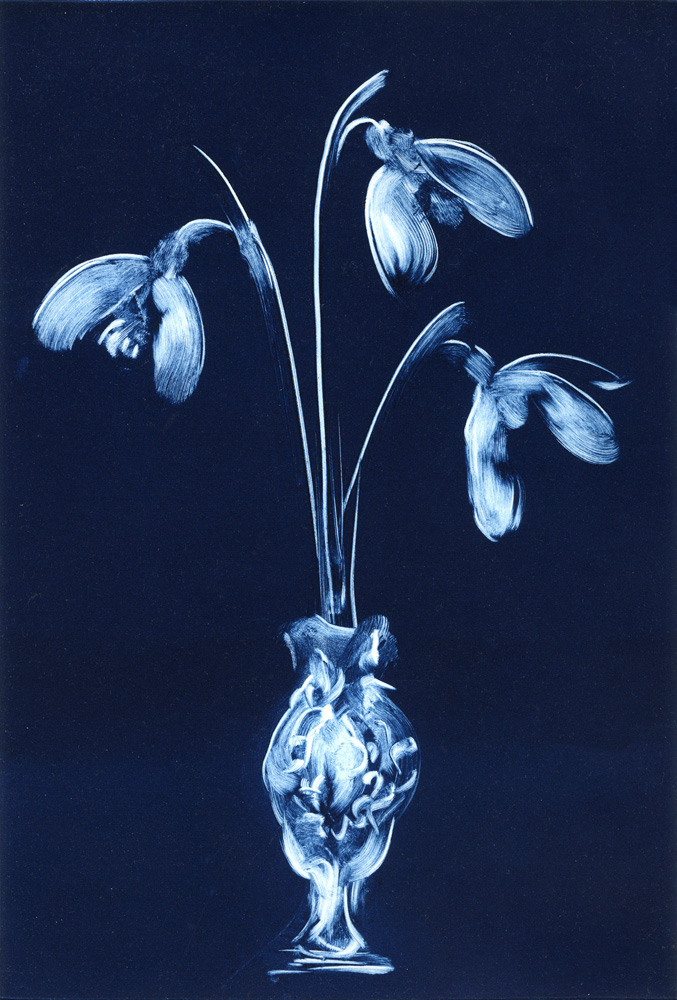 Snowdrops-Deborah-Treliving-contemporary-British-artist