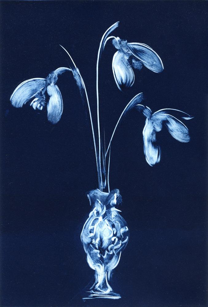 Snowdrops-Deborah-Treliving-contemporary-British-artist