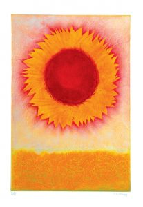 Sun-flower-A5-sunny-cheerful-greetings-card-deborah-treliving-contemporary-artist