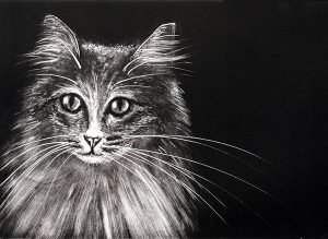 Tabitha-cat-A6-notelet-card-Deborah-Treliving-contemporary-British-artist